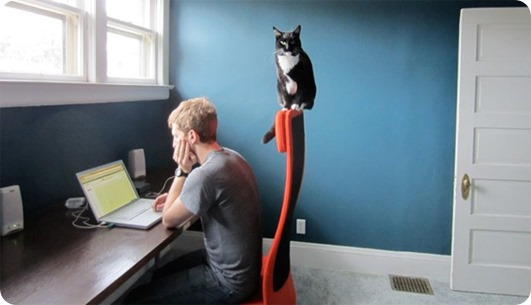 pets-home-office