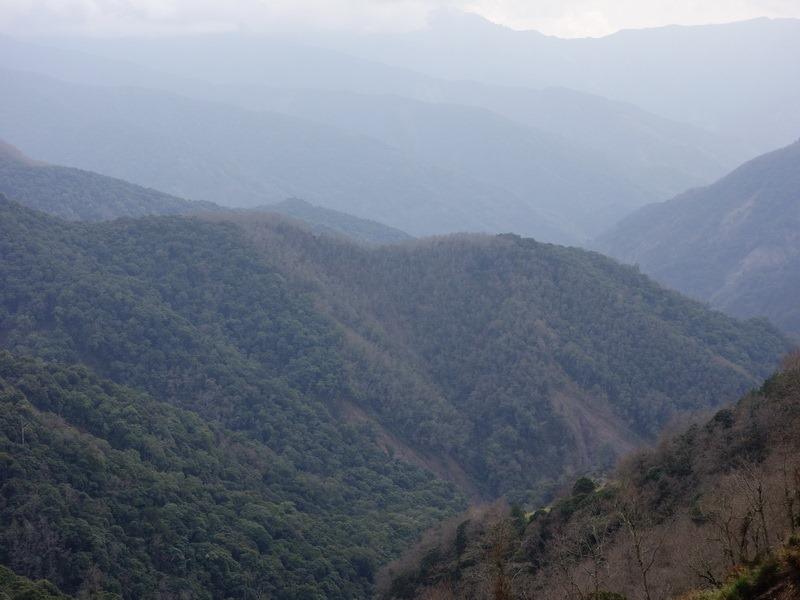 2014_0210-0214 鹿林山-3_028