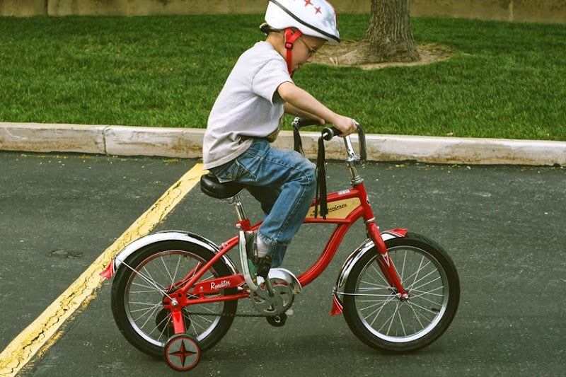 biketrailer6