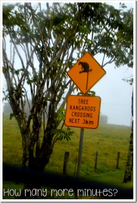 Road Tripping in Queensland   How Many More Minutes?