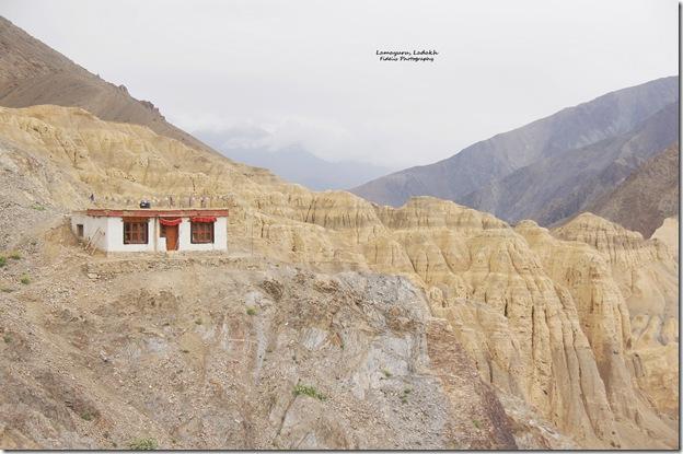 Ladakh228