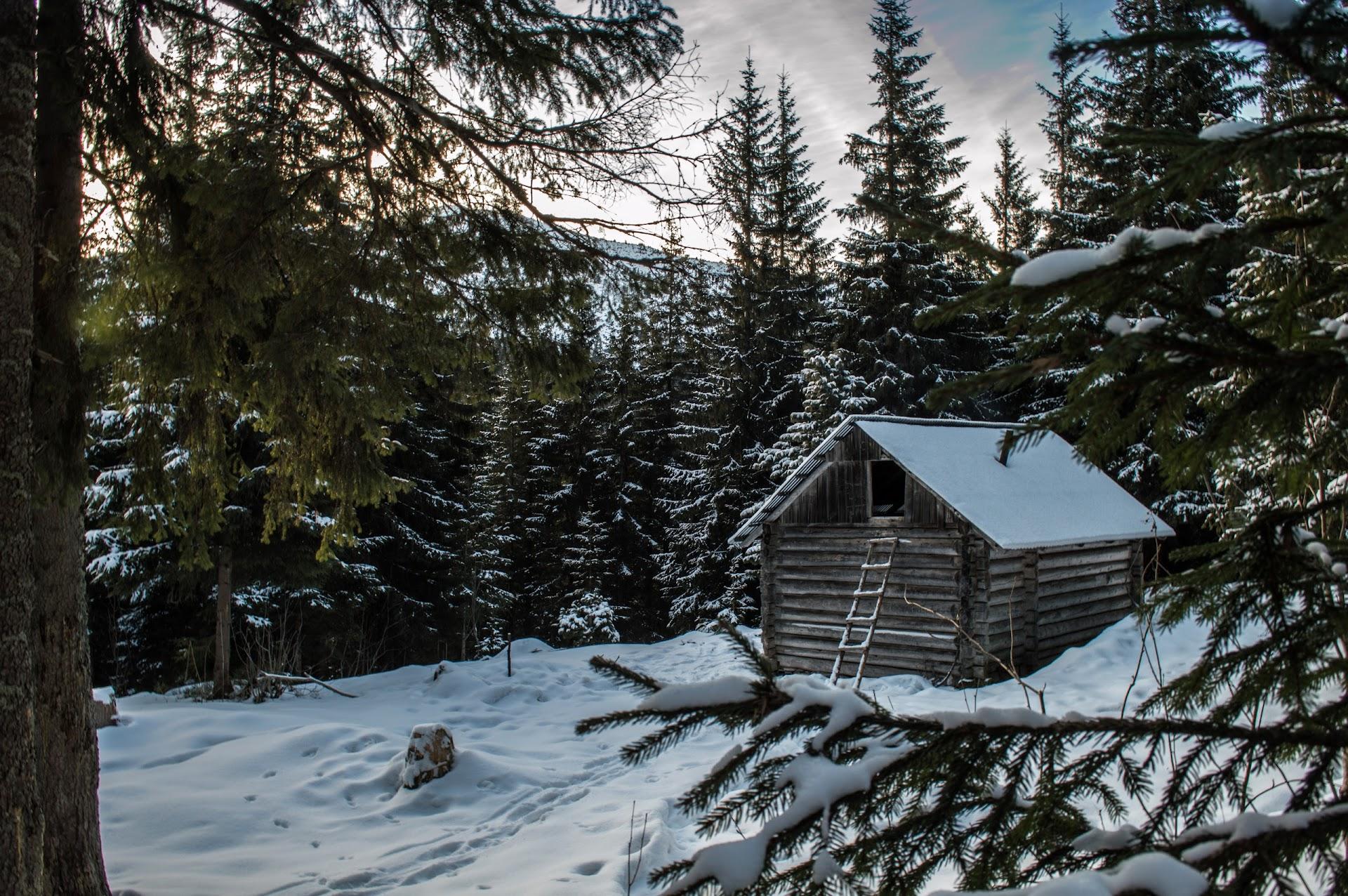 Мисливський Будиночок, Туристичний Притулок, Гірська Хатинка Під Яйком Ілемським