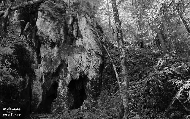 Piatra-Craiului-Nordica-7430.jpg