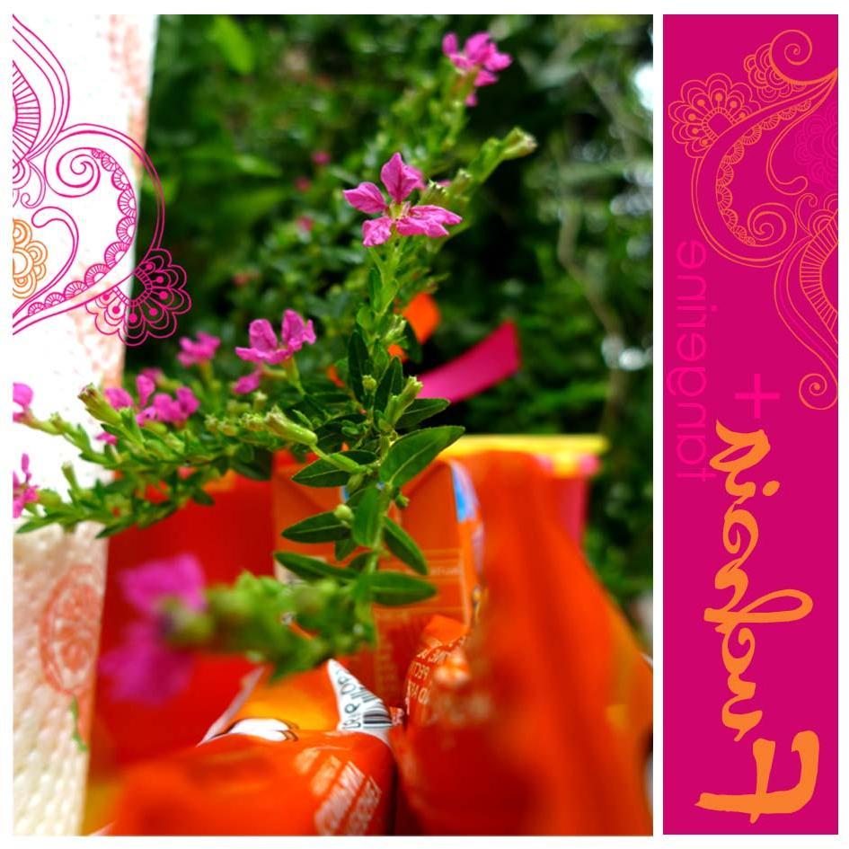 pink fuchsia and orange,