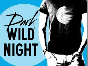 Review: Dark Wild Night (Wild Seasons #3) by Christina Lauren