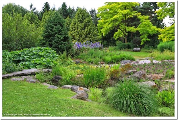 150628_Vancouver_VandusenBG_0110