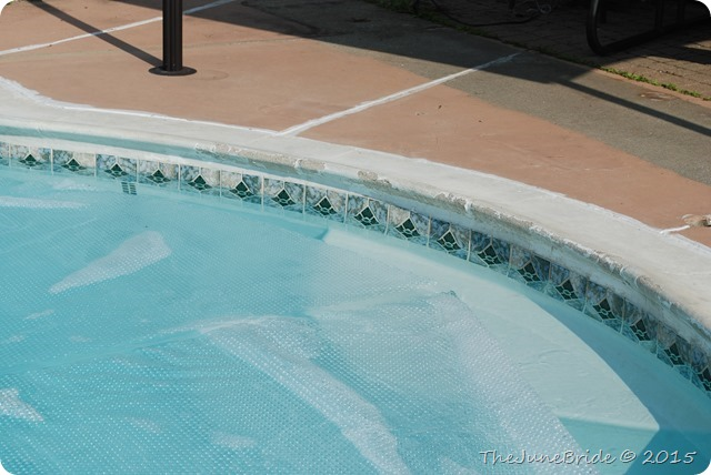 Domestic Bliss Diy Inground Pool Repair Part Iv Replacing Cracked Caulk In Expansion Joints