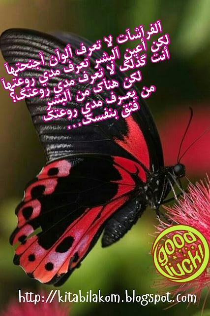 الفراشات لا تعرف ألوان أجنحتها ولكن أعين البشر تعرف مدى روعتها، أنت لا تعرف مدى روعتك، ولكن هناك من البشر من يعرف مدى أهميتك وروعتك