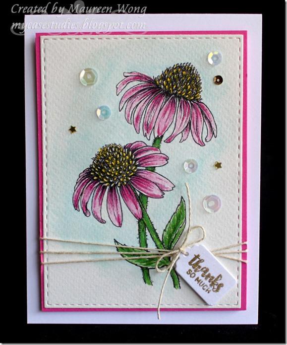 EasyBreezyConeflowers1