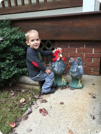 Nehemiah's Elmo on a Rooster