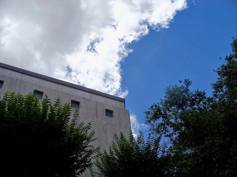 Houston Museum of Natural Science - 116_2838.JPG