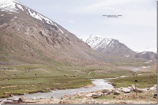 Ladakh181