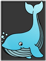 ballena dibujo color (12)