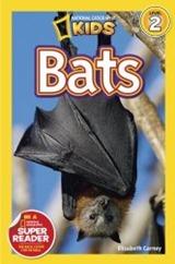 Bats NG