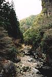Hozu-gawa River, near Kyoto, Japan.