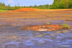 Výjimečným jevem v oblasti jsou mofety - nálevkovité prohlubně vzniklé na místě výdechů suchého oxidu uhličitého. Mofety jsou někdy nesprávně označovány jako nepravé bahenní sopky.