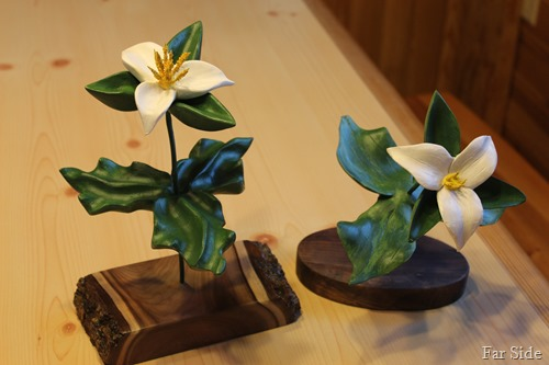 Trilliums Finished