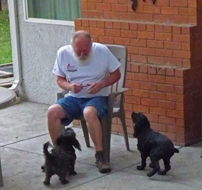 Skruffy and Bubba getting morning treat from Arnie