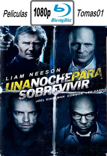 Una Noche para Sobrevivir (2015) [BDRip m1080p/Dual Castellano-ingles]