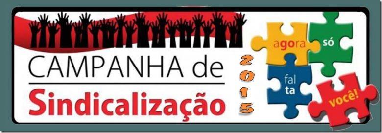 sindicalizacao-2015