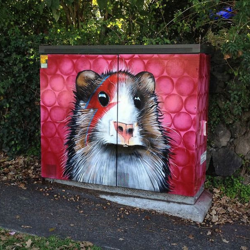 Auckland's Utility Boxes Get Graffiti Makeover
