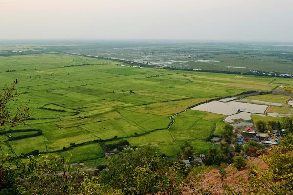 тонле сап пном кром рисовые поля сиемреап