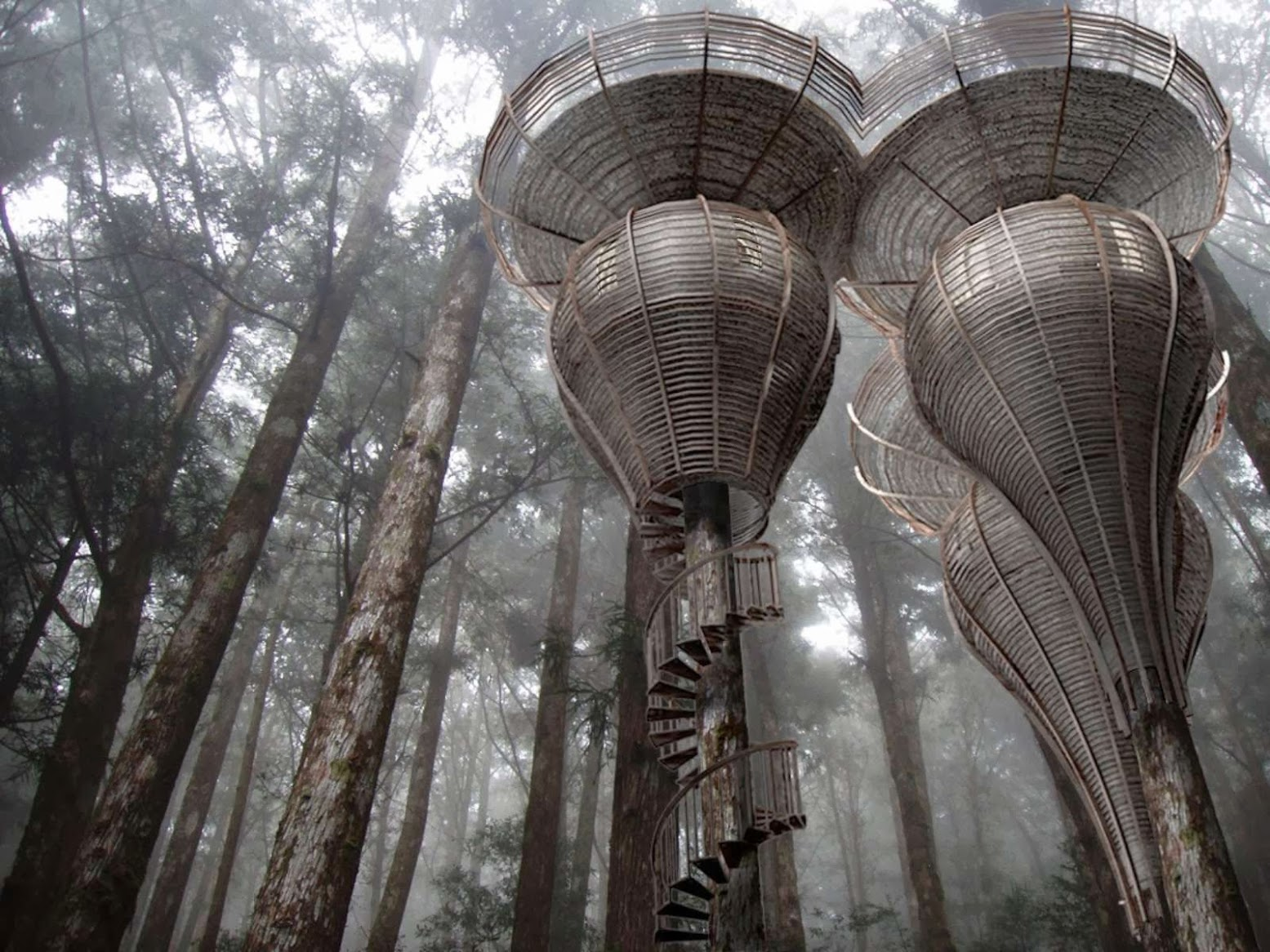 Mulhouse, Francia: [ROOST TREEHOUSE BY ANTONY GIBBON DESIGNS]