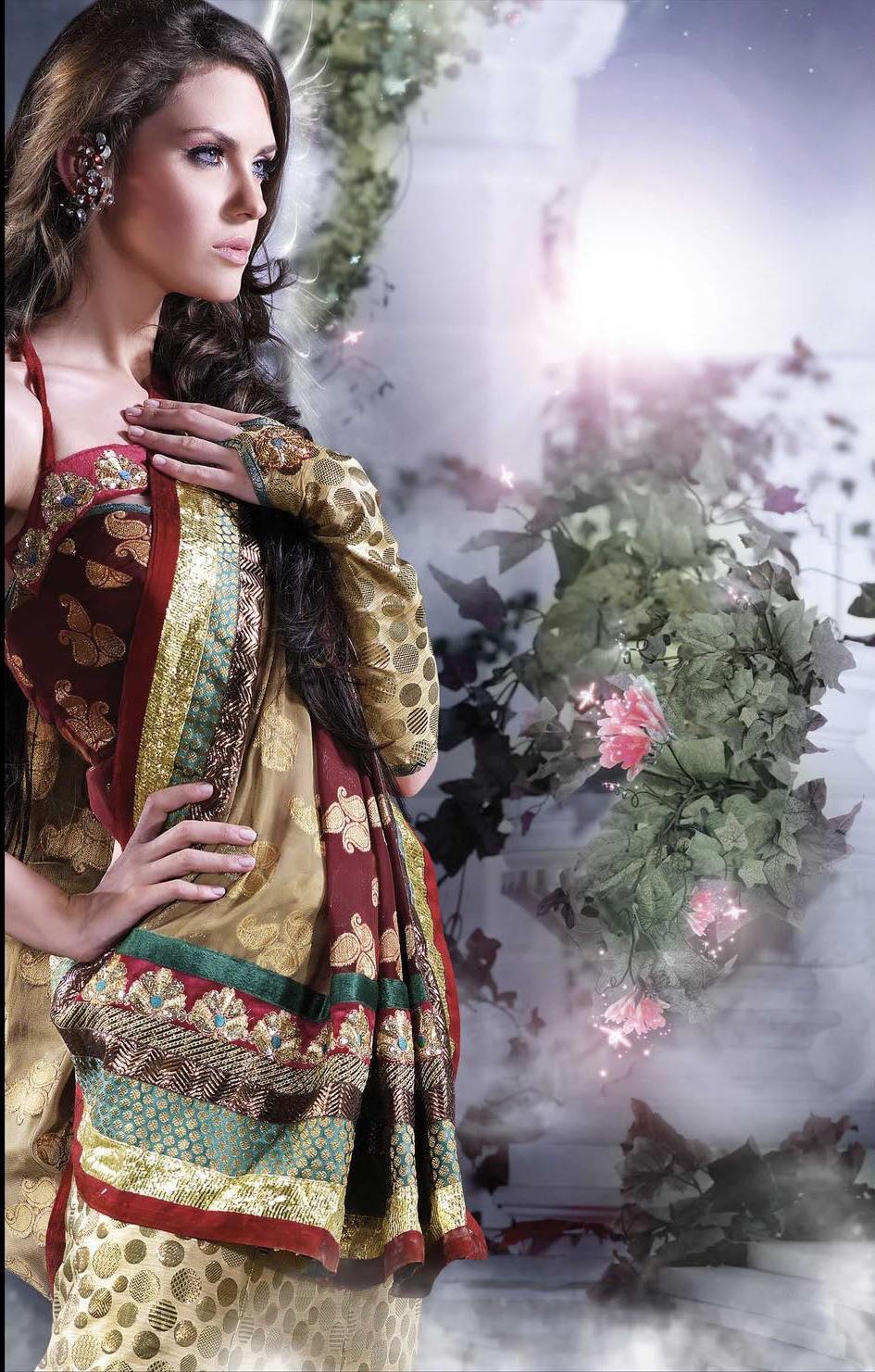 Vivaha   Asian Bridal Sarees