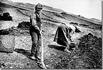 Crofter & wife plant potatoes