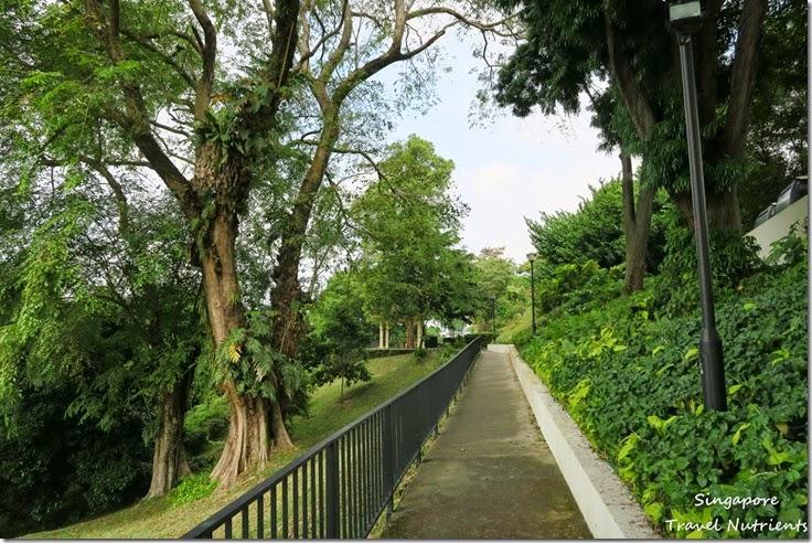 新加坡花柏山 (14)