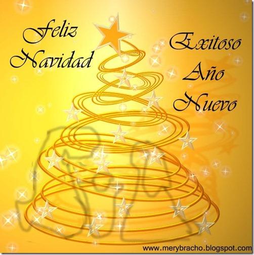 feliz navidad mensajes cristianos (14)