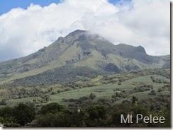 168 Mt Pelee