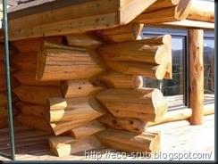 дом из дикого бруса 1
