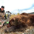 Dud Bear 2381.jpg