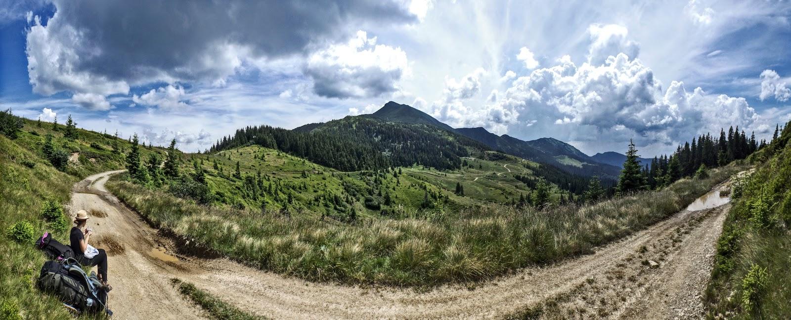 Панорама, полонини Лисича та гори Піп Іван Мармароський
