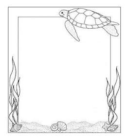 frame_turtle.jpg