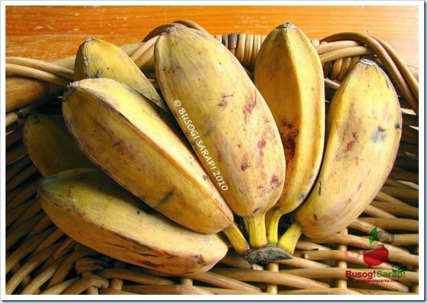 saba banana Cardava has the highest content of nutrients because it has the deepest roots among other banana plants, of which can absorb more nutrients from the soil.