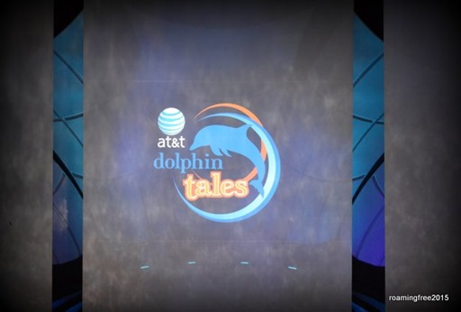 dolphin tales/tails