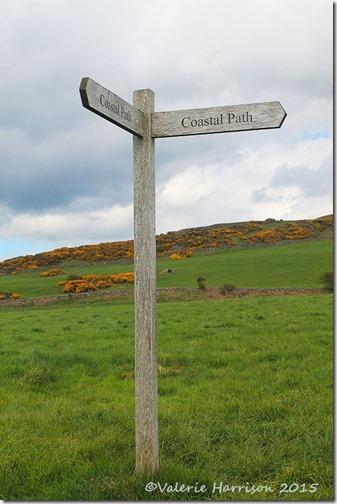 18-Coastal-Path