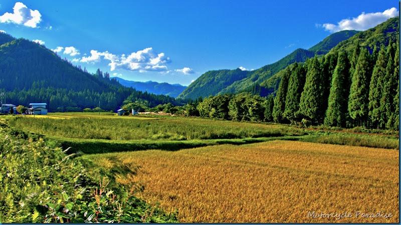 Rural view Akita (2)