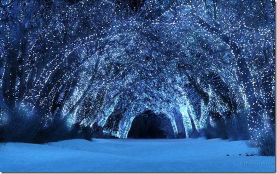 paisajes navidad (9)