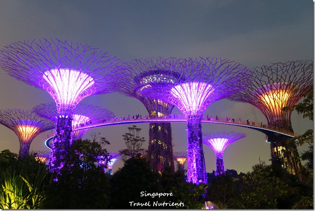 新加坡超級樹燈光秀 (26)