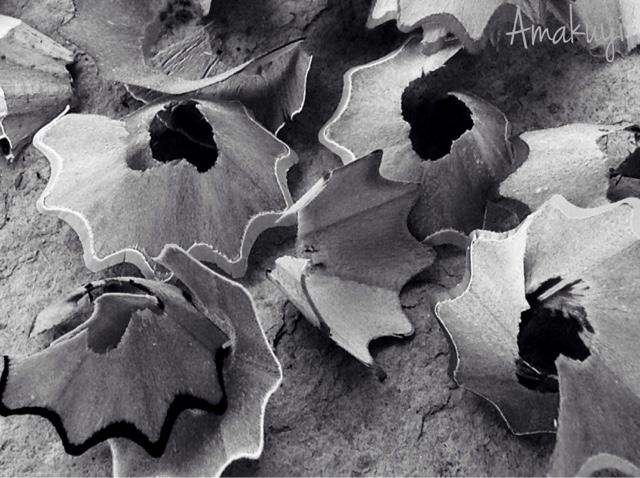 Hoy-compartimos-foto-blanco-y-negro