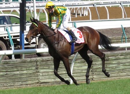 race 7_derby_kia ora koutou