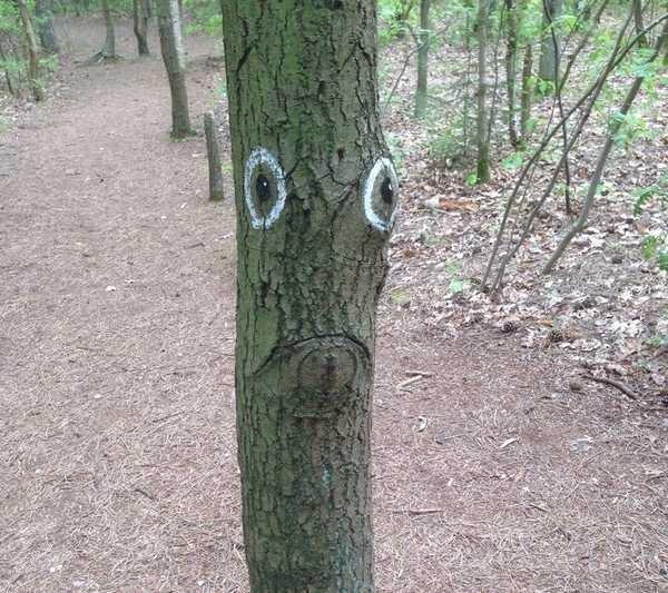 Eu vejo rostos em todos os lugares 4