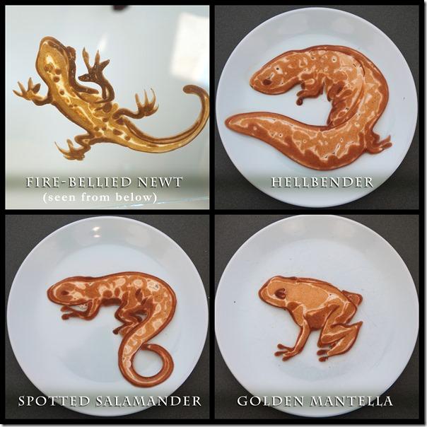 1-amphibians