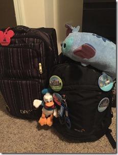 DL suitcase
