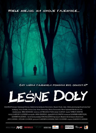 Le¶ne Do³y (2011) PL.TVRip.x264 / PL