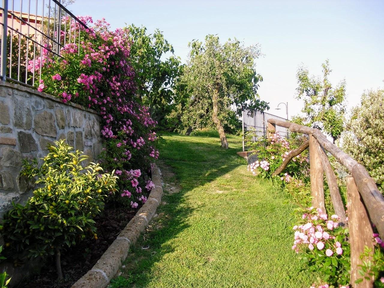 Ferienhaus Casale di Buggiano (1975399), Buggiano, Pistoia, Toskana, Italien, Bild 12