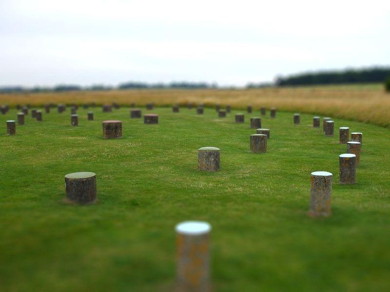 woodhenge-2